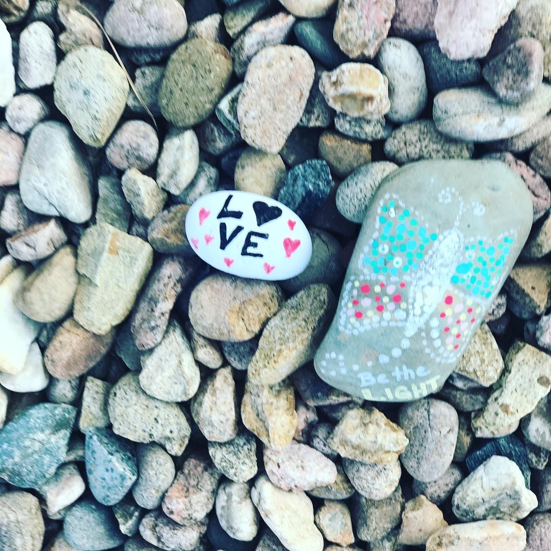 Paint Rocks & Plant Them In Neighborhood